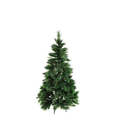 sm-fir-xmas-tree